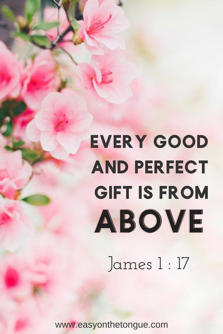 Every new and perfect gift is from above #james1-17 #scripture #motivation #blessings