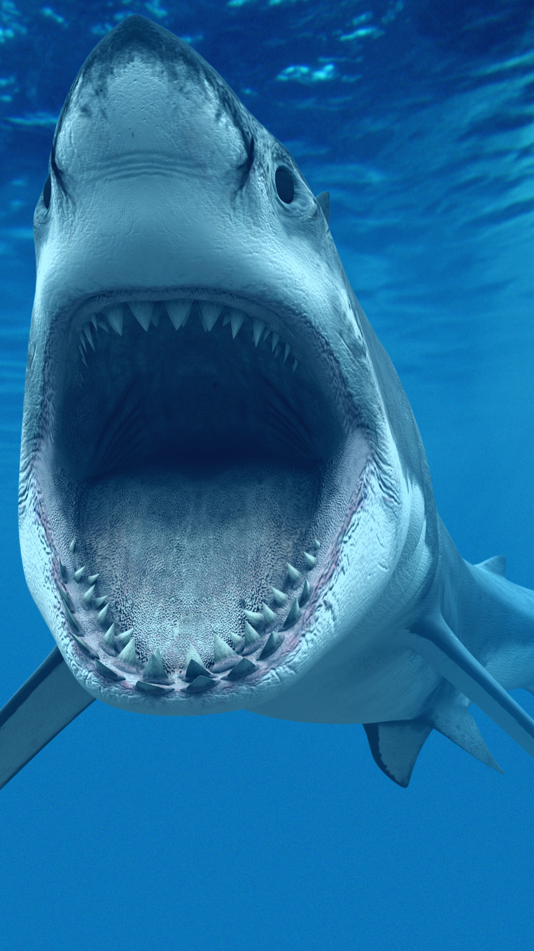 great white shark iphone wallpapers | iphone wallpapers - and all