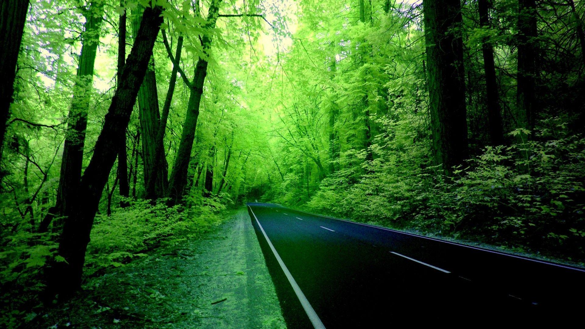 Computer Wallpapers Nature Green Best Wallpaper Hd Desktop Background Nature Nature Desktop Greenery Wallpaper