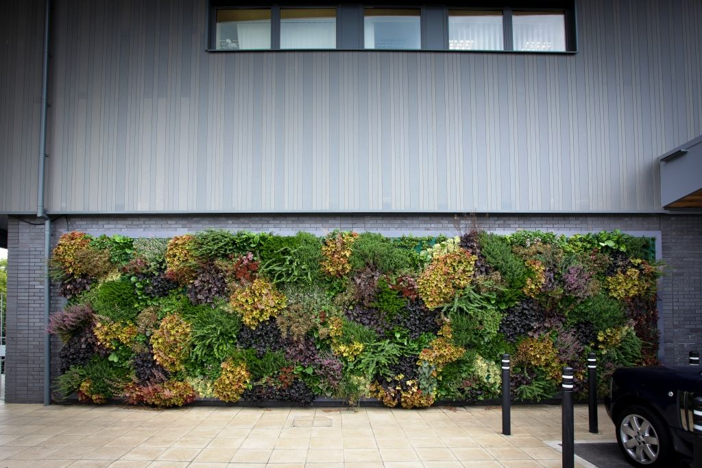 LivePanel, Bracknell Suite Plants Vertical garden