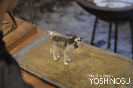 羊毛フェルト オオカミ YOSHiNOBU