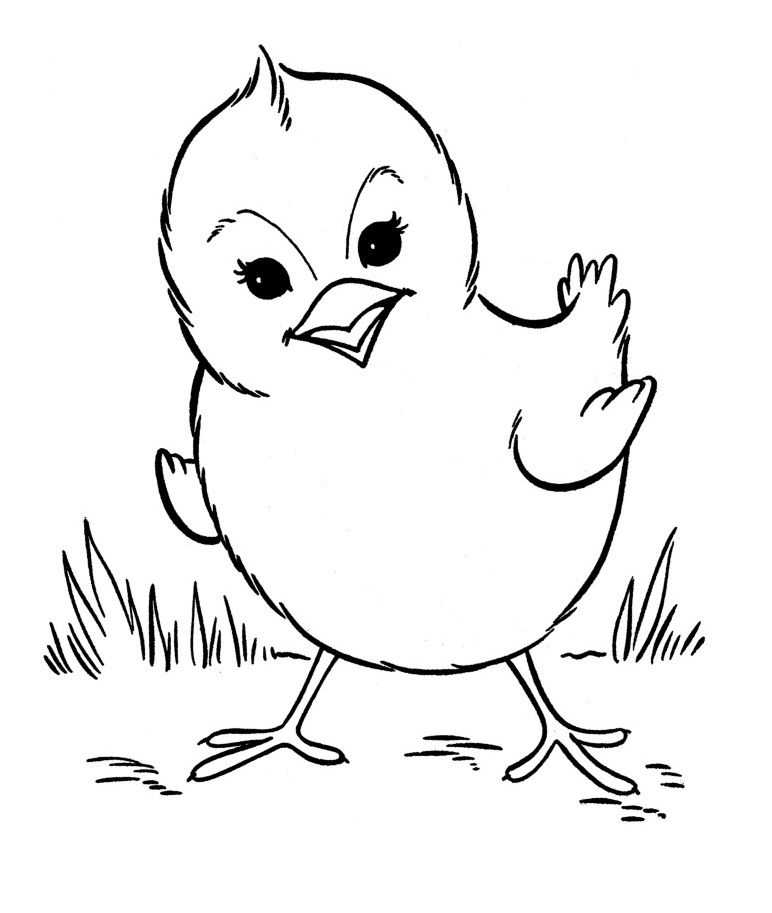baby farm animal coloring pages - Pictures Farm Animals Color