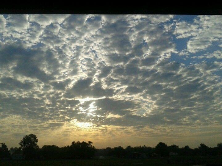 Anahuac T.X. morning