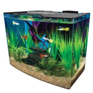 Marineland 3 Gallon Crescent Aquarium System Aquariums Petsmart Aquarium Systems Betta Fish Tank Fresh Water Fish Tank
