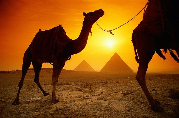 """Nothing says """"Egypt"""" like pyramids and camels."""