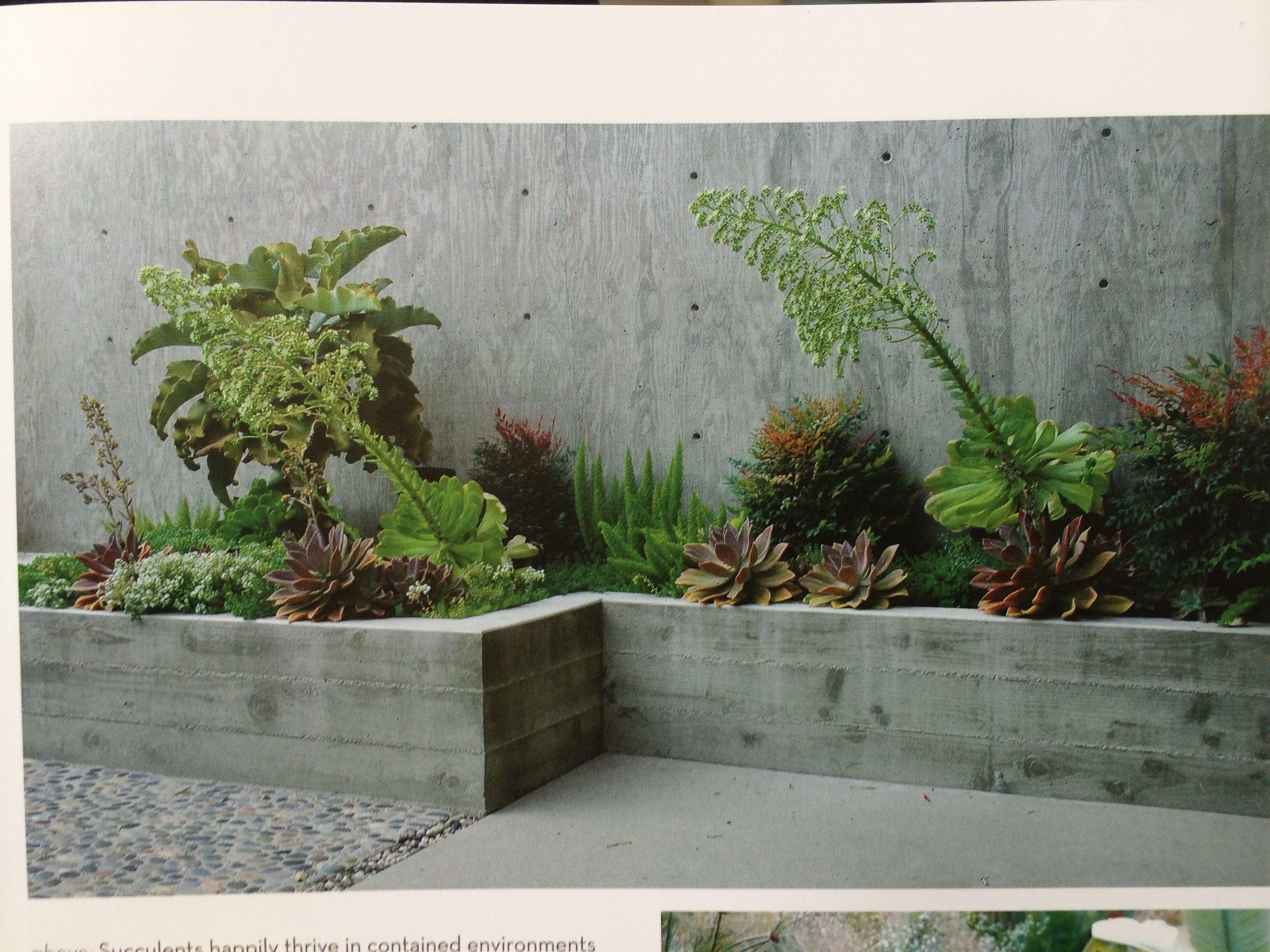 Concrete Retainer Planter Succulent Landscaping Front Yard Landscaping Retaining Walls Concrete Planters
