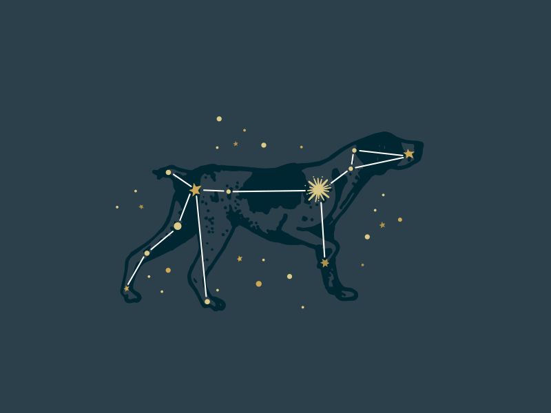 Photo of Canis Major Constellation
