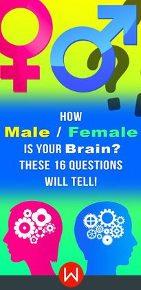 Quiz: How Male / Female Is Your Brain? These 16 Questions