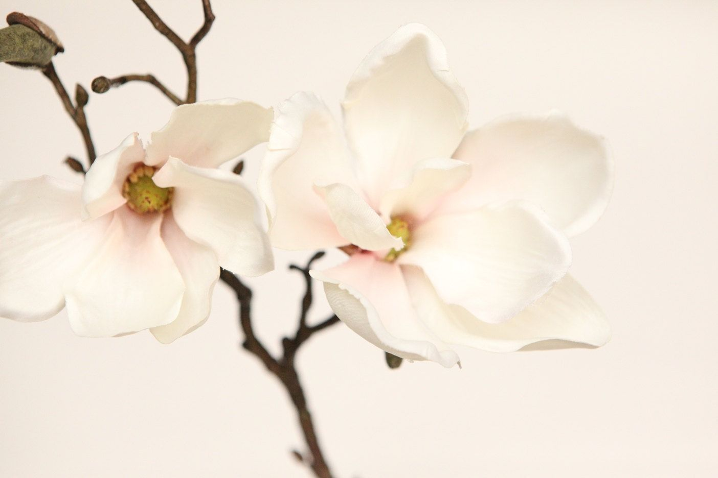19 Magnolia Spray In White And Pink Blush Floral Etsy Silk Flowers Flowers For Sale Flower Spray