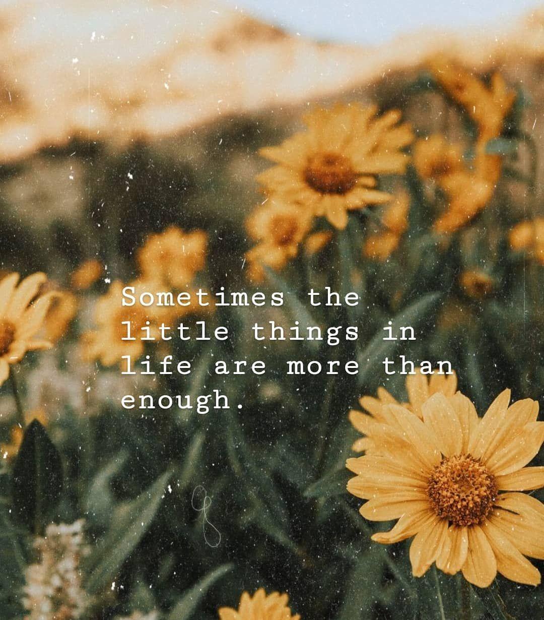 🌻 . . . . . . #quoteoftheday #quote #sunflower #flower # ...
