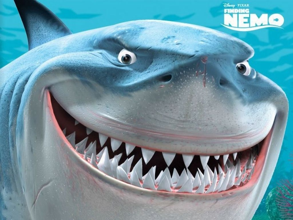 bruce the Shark | Bruce the Shark | Finding nemo | 1024 x 768 ...