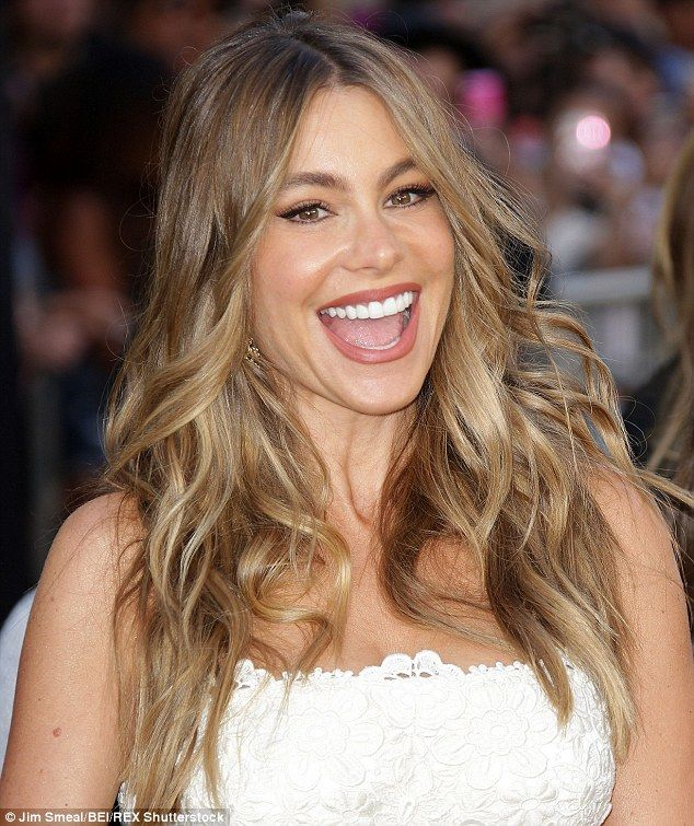 Sofia Vergara bags a coveted cameo role in The Simpsons