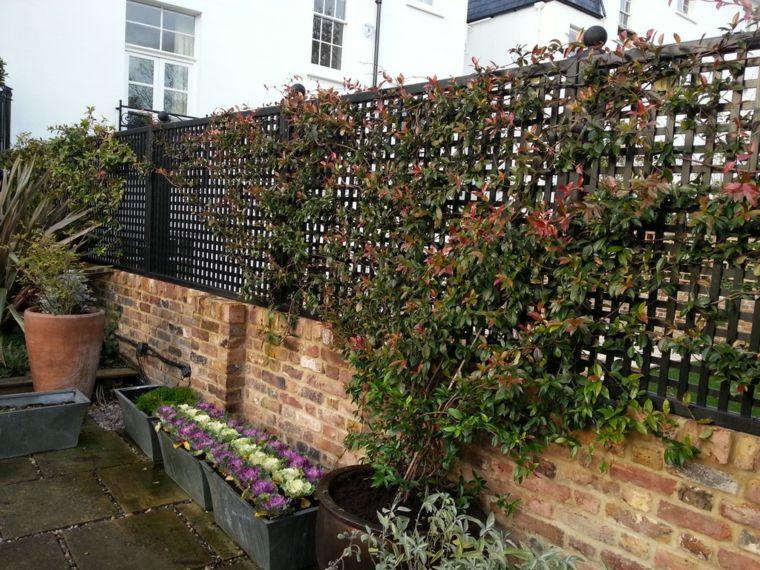 Estilo en el jard n con enrejados para plantas trepadoras jardines rejas plantas y enrejado - Plantas para vallas ...