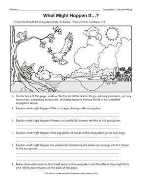 ecology levels of organization worksheet - Google Search