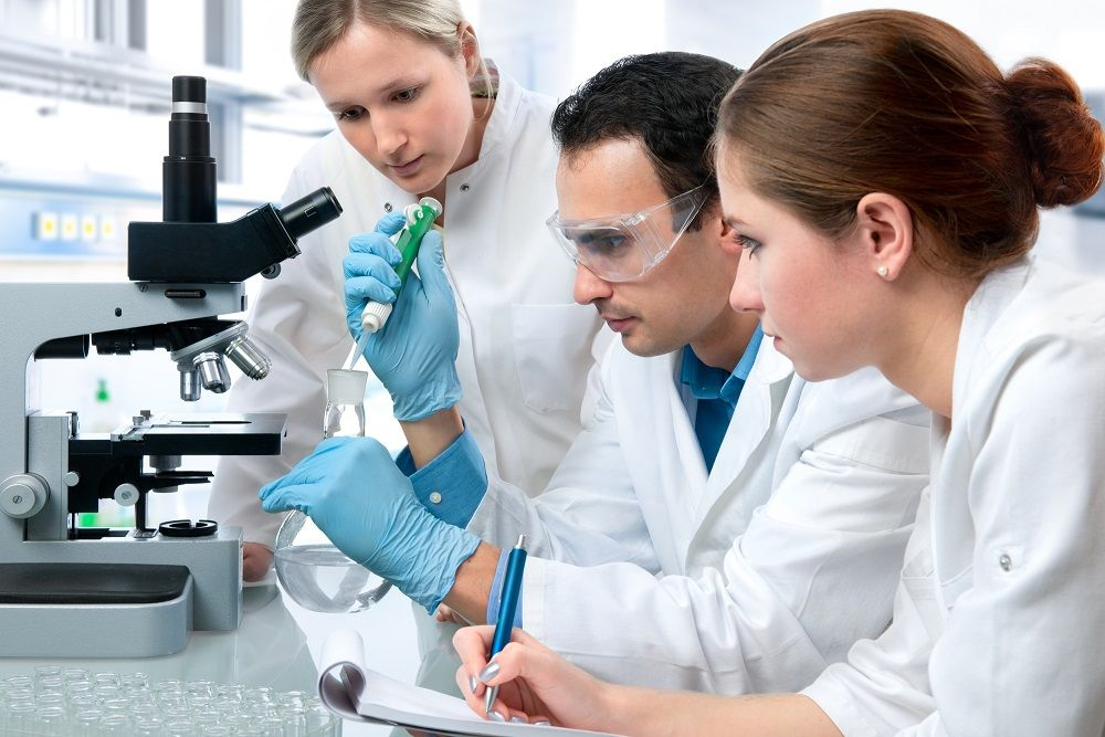 Bachelor of Science Brisbane Compare Your Child's