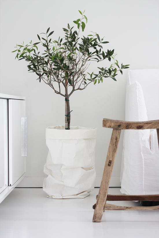 Greens Whites Interieur Ideeen Voor Thuisdecoratie