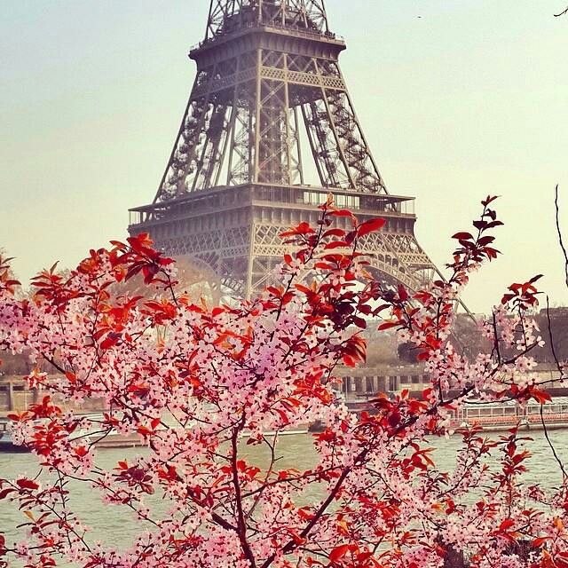 As if I need another reason to LOVE Paris.....