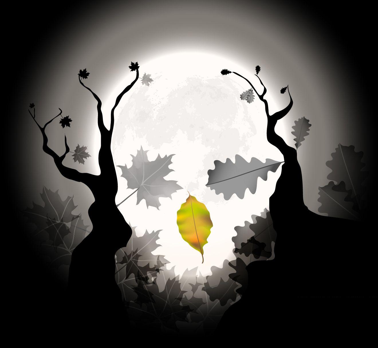 Natura morta notturna