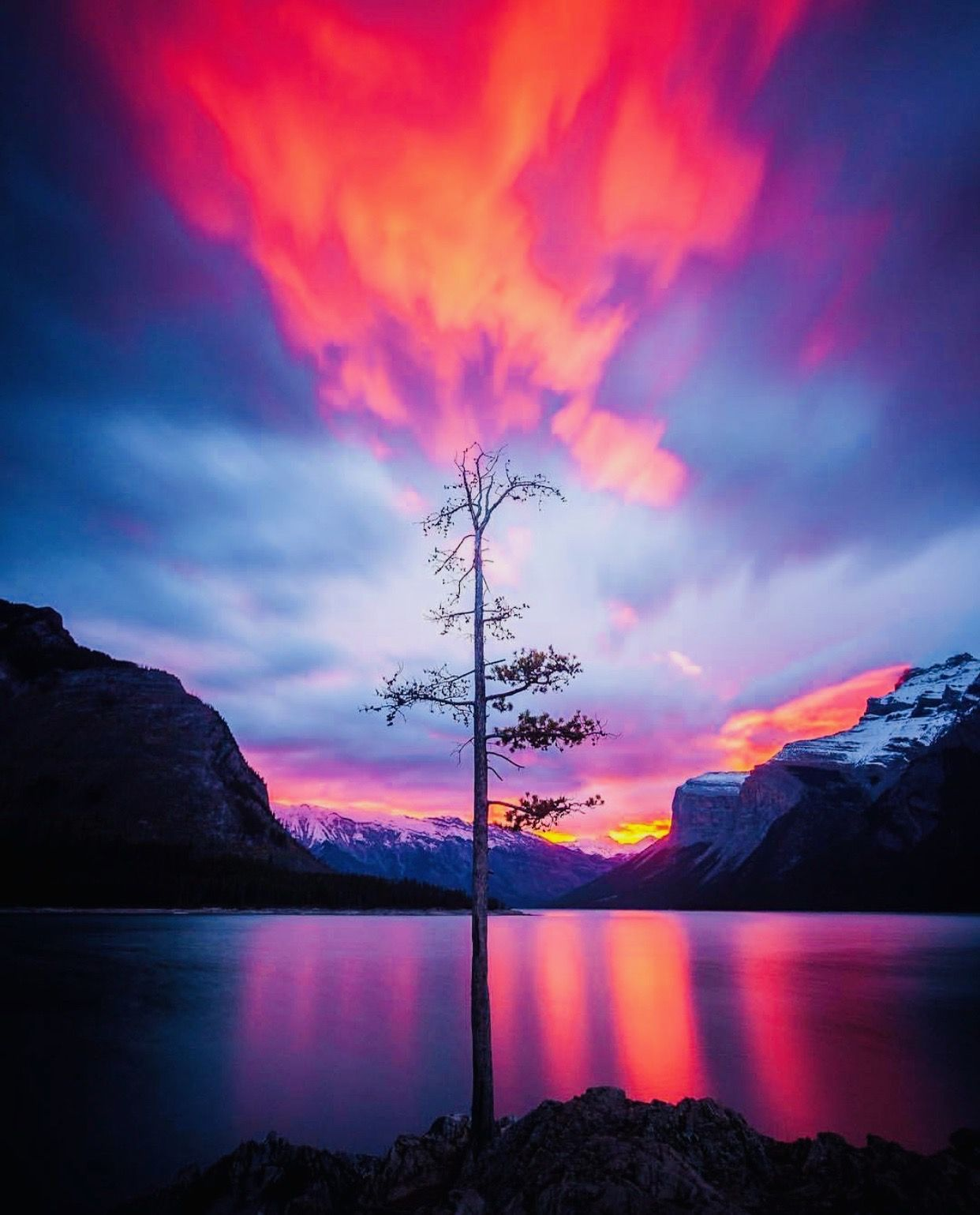 Beautiful photography nature, Nature photography