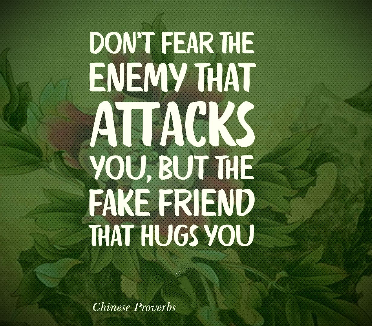 Don T Fear The Enemy That Attacks You But The Fake Friend That Hugs You Chinese Proverb Fake Friends Proverbs Chinese Proverbs