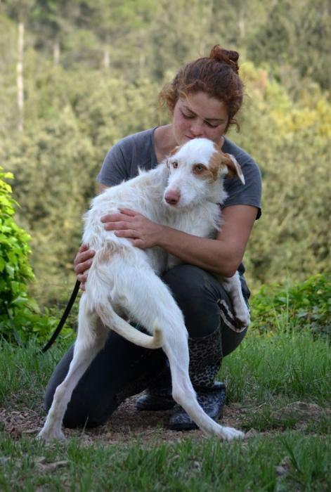 Tier Kleinanzeigen Com Nbspthis Website Is For Sale Nbsptier Kleinanzeigen Resources And Information Tiere Verschenken Kleinanzeigen