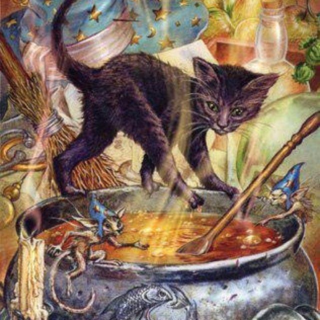)o(  black cat cauldron  fairies  art
