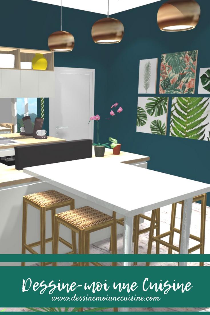 Esprit Tropical Dans Une Véranda Projet Cuisine 3d