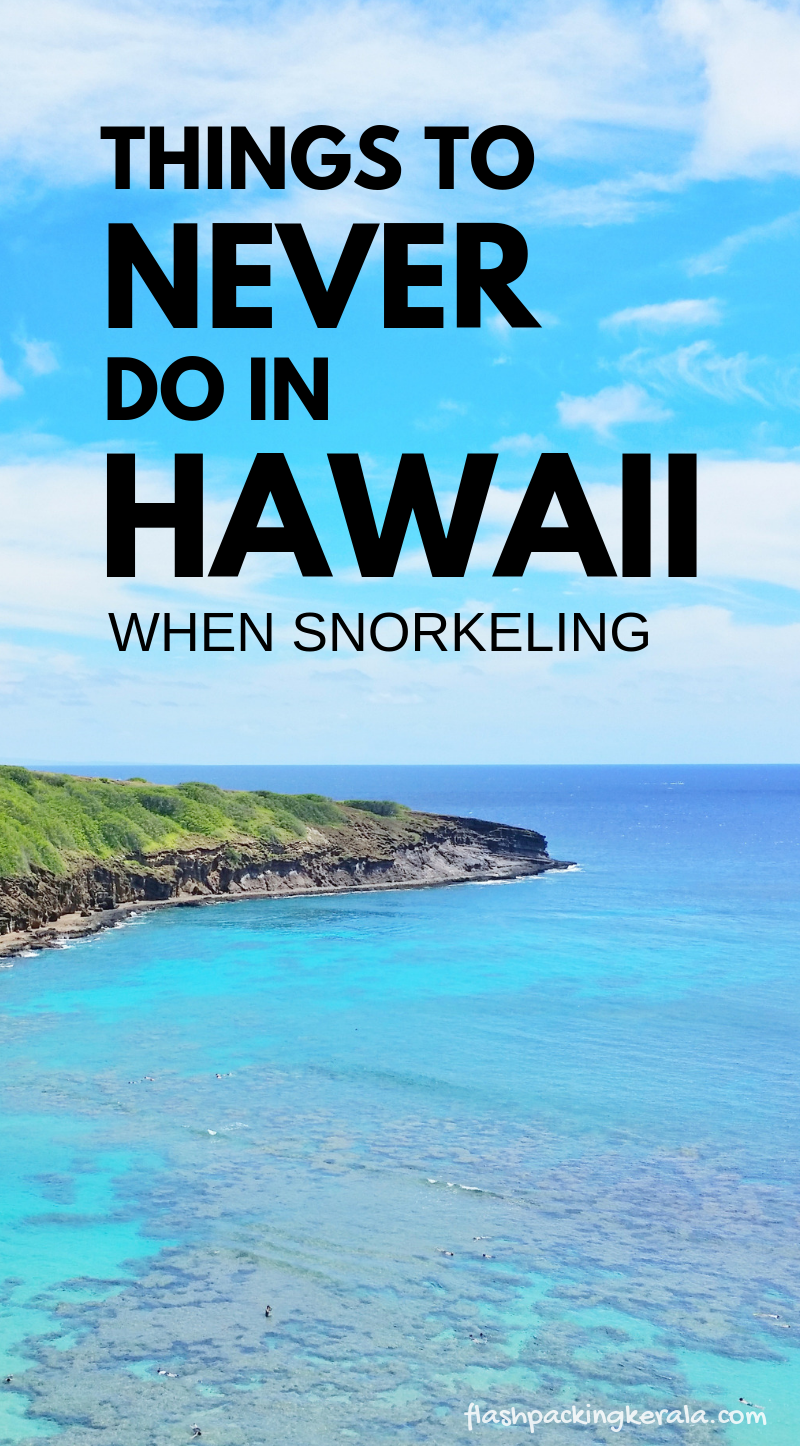 snorkeling in hawaii for first time in 2019: know before you go