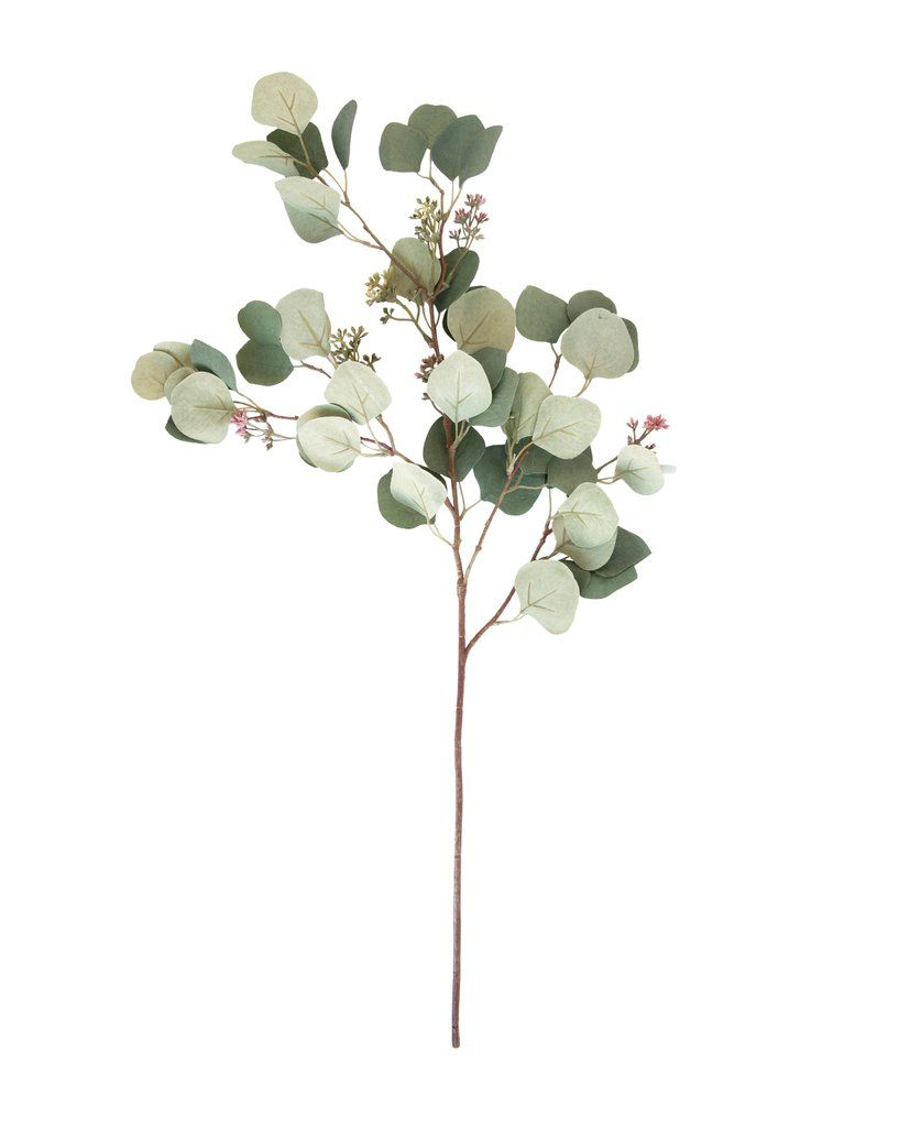 Every Space Looks Better With A Touch Of Nature And Our Faux Silver Dollar Eucalyptus Stems Makes And Easy A Silver Dollar Eucalyptus Eucalyptus Spring Shades