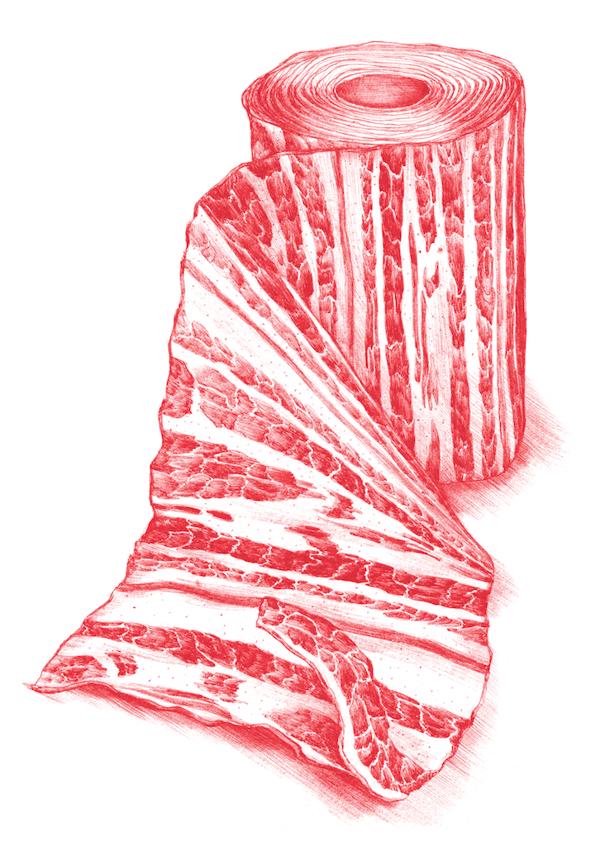 In Vitro Meat Cookbook by Silvia Celiberti, via Behance