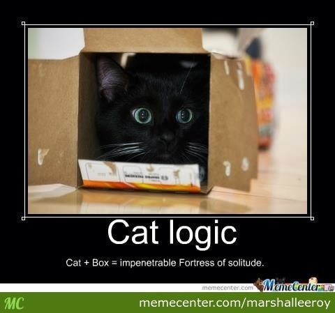 cat in a box memes catlogic cat box impenetrable fortress of solitude random stuff. Black Bedroom Furniture Sets. Home Design Ideas