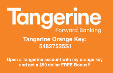 Tangerine tfsa investment options