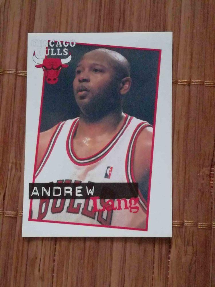 Andrew Lang Chicago Bulls sticker 51 Panini Basketball