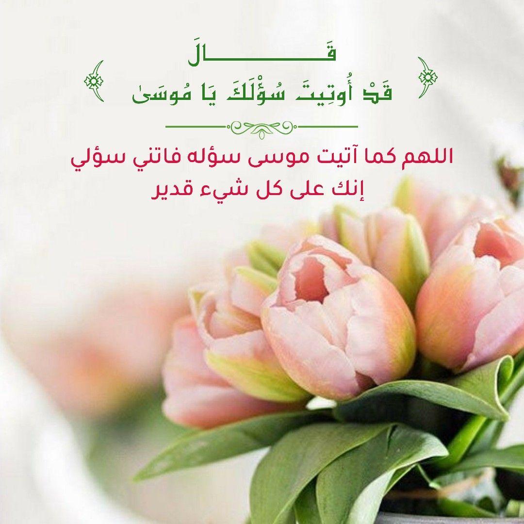 قرآن كريم آية ق ال ق د أ وت يت س ؤ ل ك ي ا م وس ى Allah Calligraphy Radish Allah