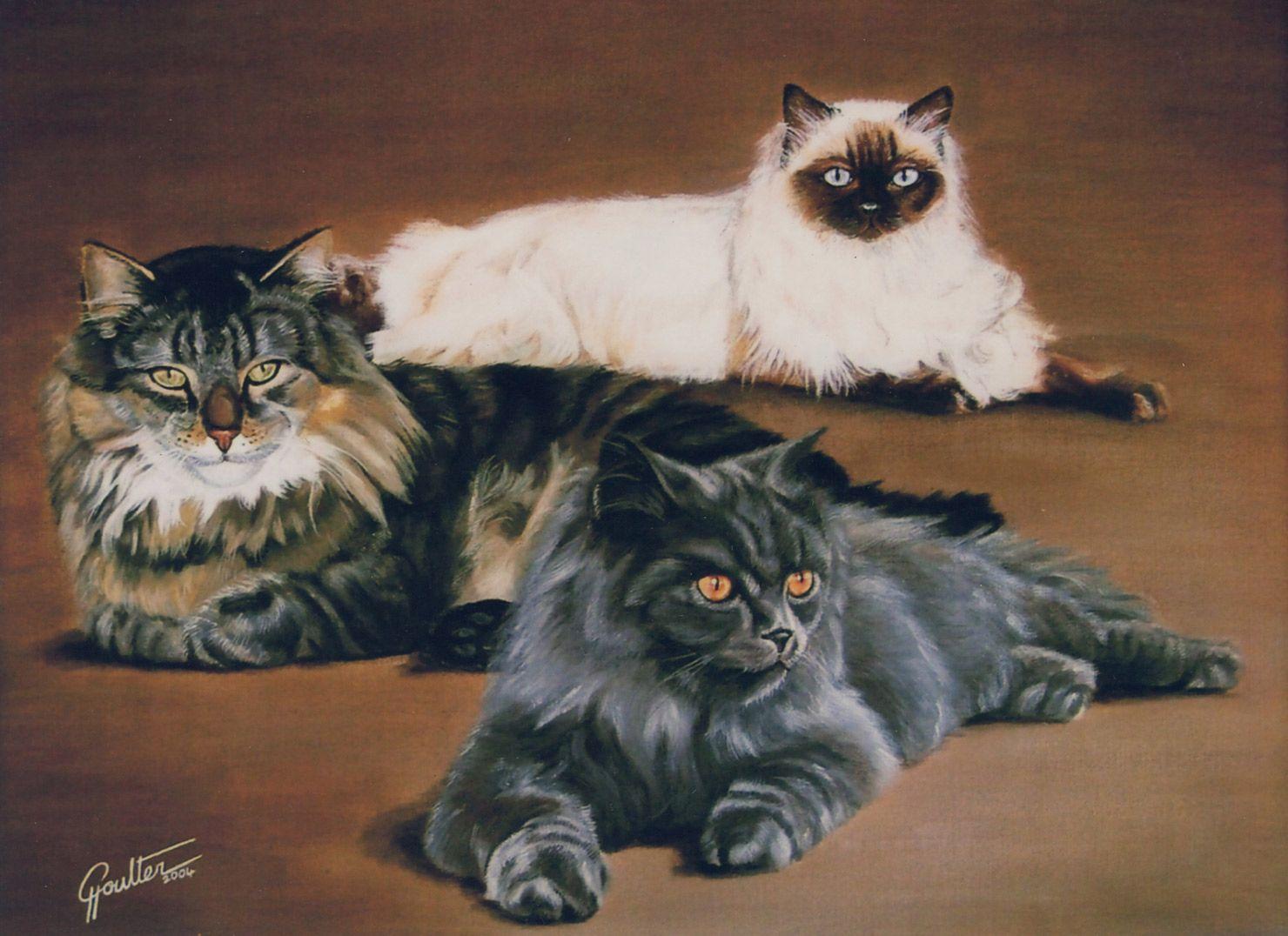 Mercuryenyaandkudarwg art cats and other