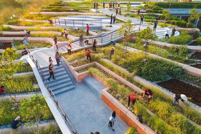 Thammasat University The Largest Urban Rooftop Farm In Asia In 2020 Urban Farming Architecture Urban Heat Island Urban Farming