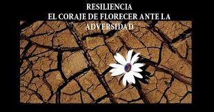 Qué es la resiliencia