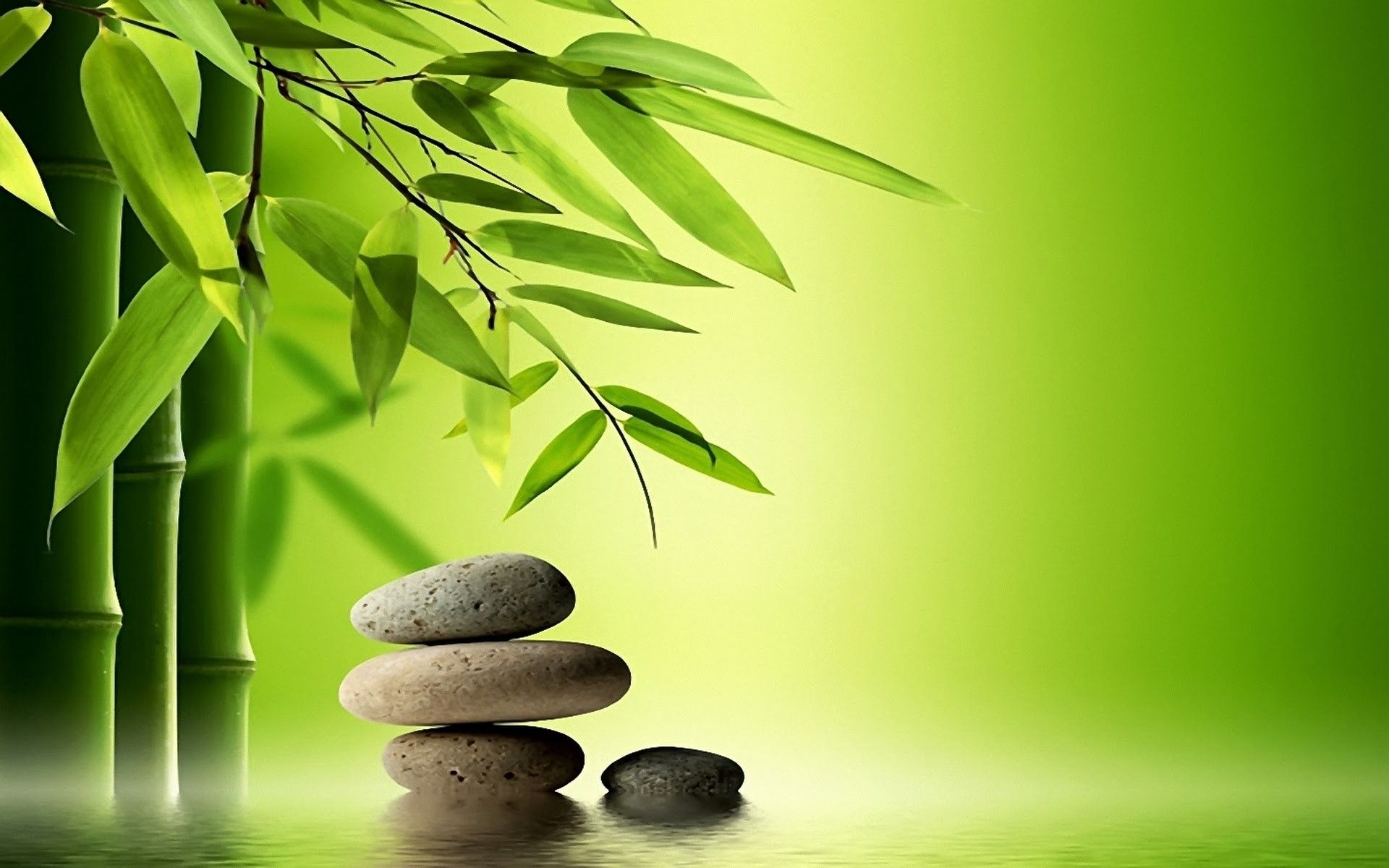 Bamboo tree and special rocks for massage relaxing time