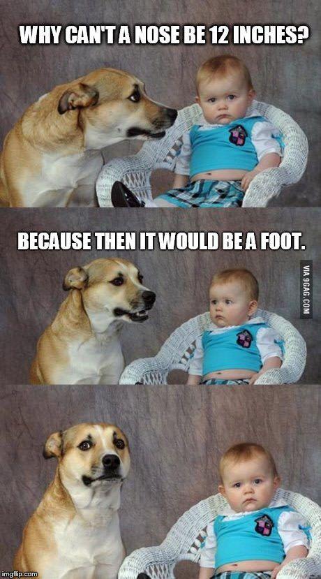 Pundog jr and the baby, dad joke division