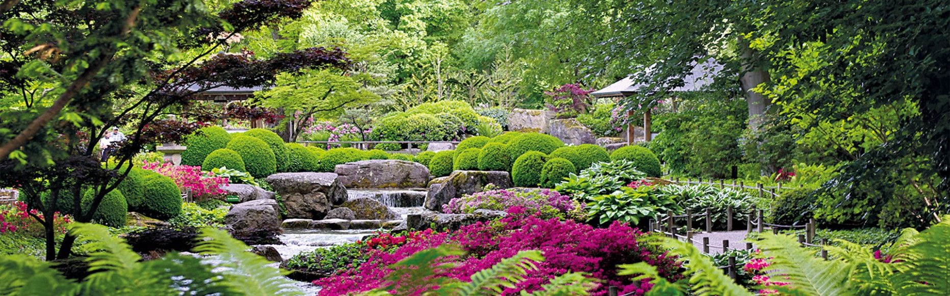 Augsburg Garten In 2021 Garten Botanischer Garten Augsburg Japanischer Garten