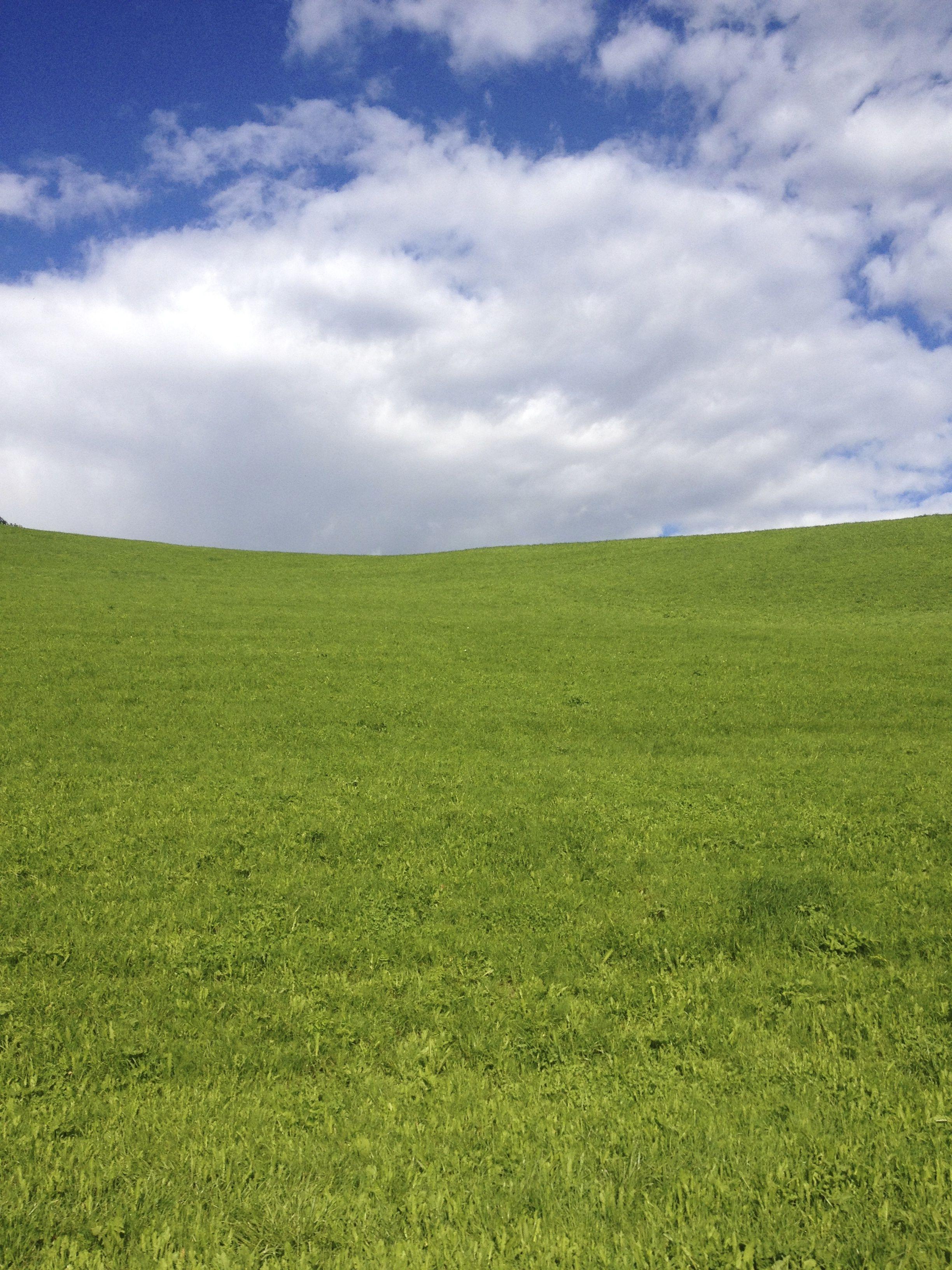 Verdeazzurro