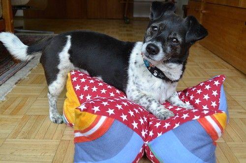 Sternkissen - Hundebett nähen (einfach und schön!) , von corinna ...