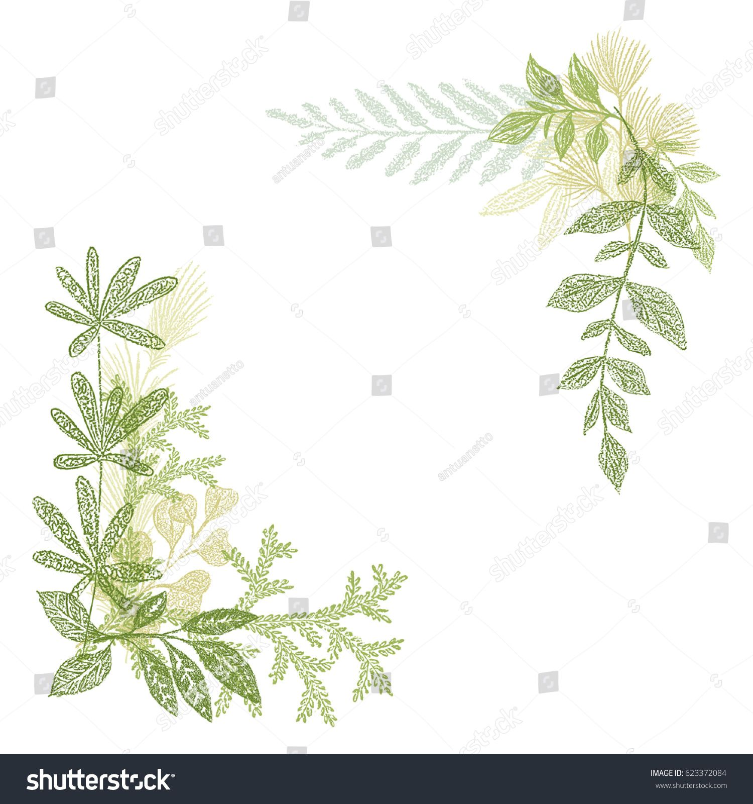 Floral Hand Drawing Green Leaf Composition Vector Greenery