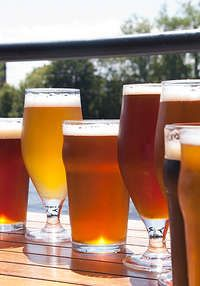 $40 Toward Food and Craft Beer: Milwaukee Ale House
