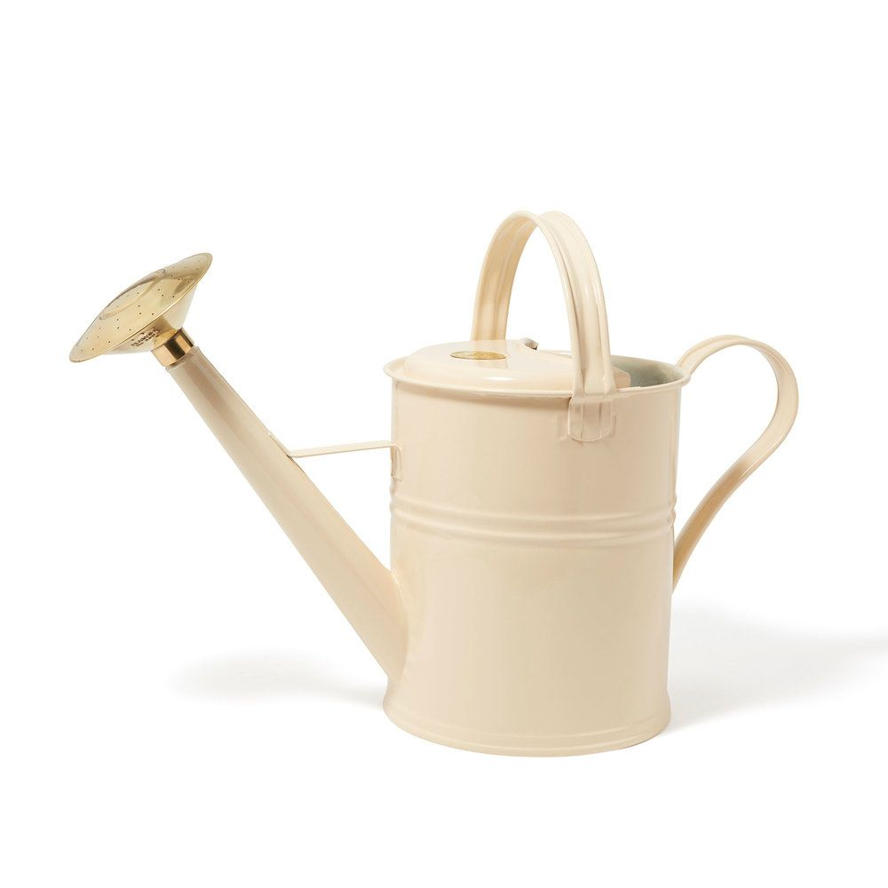 Blomus Verdo 6l Stainless Watering Can Modern Watering Cans