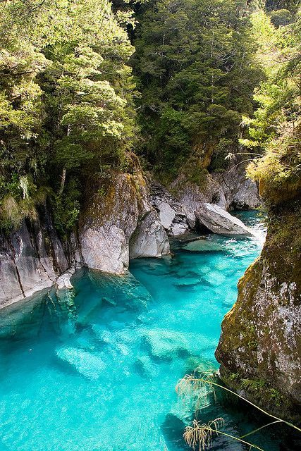 The Blue Pools, Queenstown, New Zealand  I want to go to New Zealand so bad!!!!!!!!  It is my dream destination.