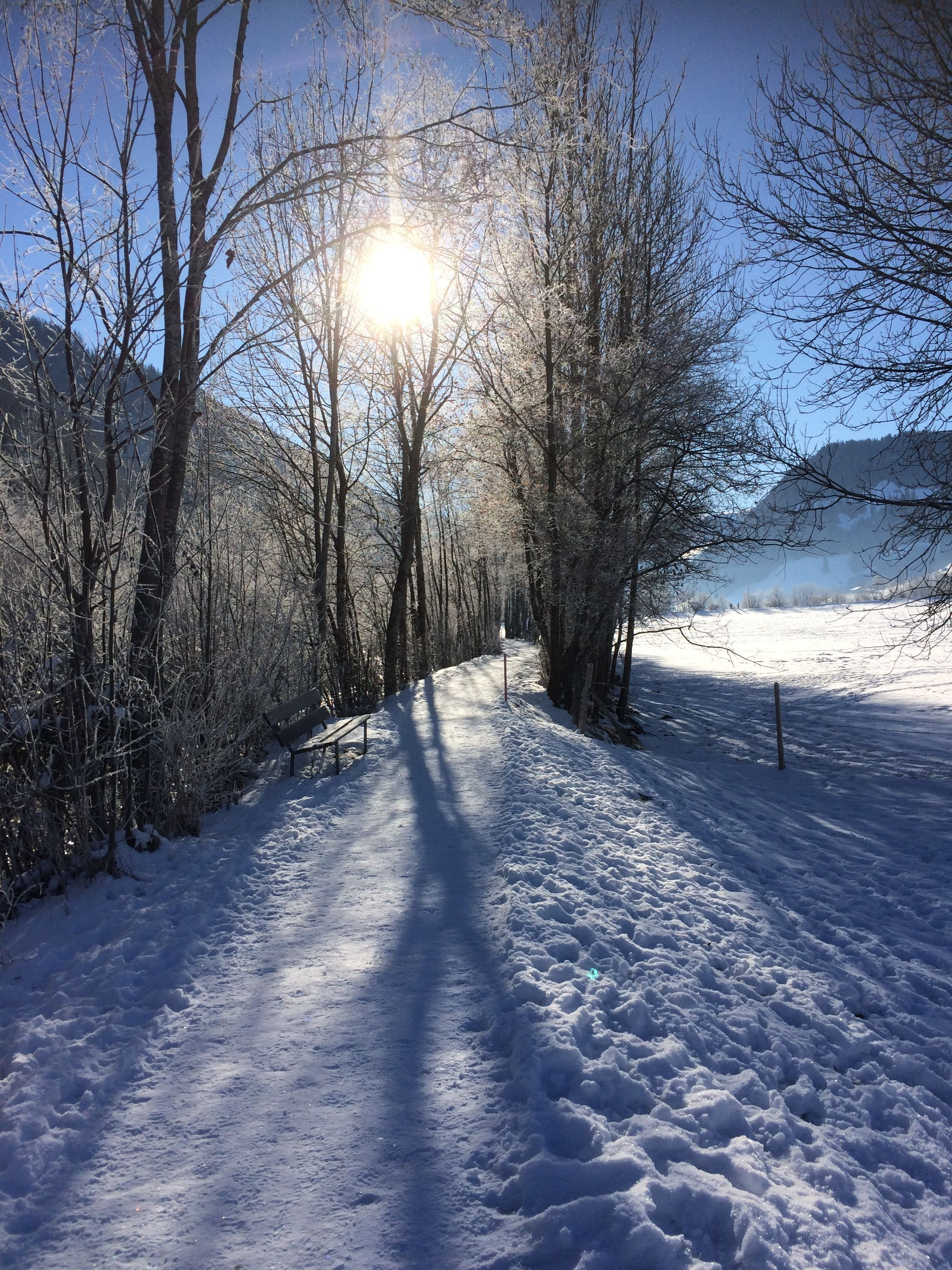 Winderful Winter Day - https://loticaworld.wordpress.com/ Follow us at https://www.facebook.com/loticaworld/ #winter#wintertime#snow#travel#sunlight#sun#blueskies#hiking#travel#switzerland#schweiz#snow#schnee