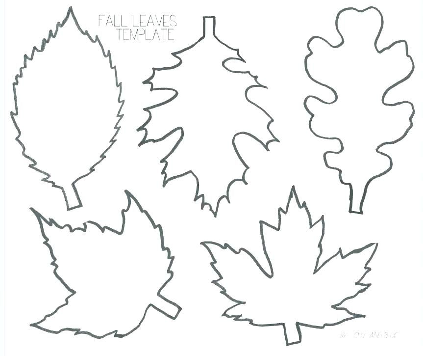 Pin By Carolyn Tinner On Leaves Leaf Coloring Page Oak Leaf