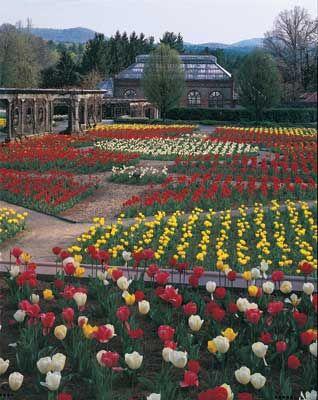 Asheville S Finest Home Biltmore Estate Estate Garden Biltmore House
