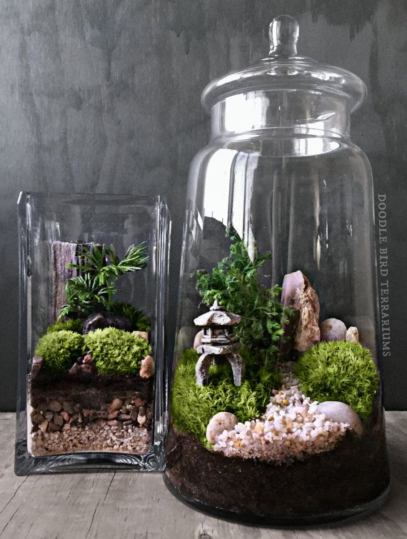custom japanese garden terrarium with miniature path pagoda tree in a large apothecary jar. Black Bedroom Furniture Sets. Home Design Ideas